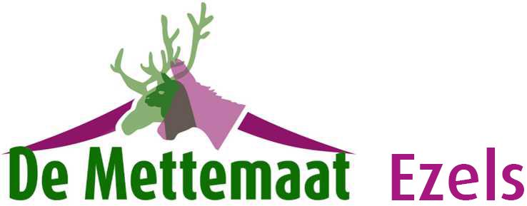 Fokkerij, verkoop en verhuur van echte ezels: De Mettemaat!